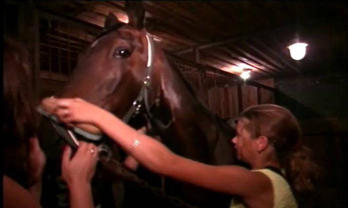 When Horses and Naturists Meet - Naturism in Russia 2000 Series - 1