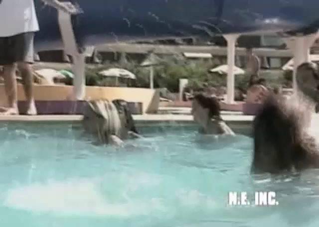 Miss Teen Nudist 2001 2 - 2