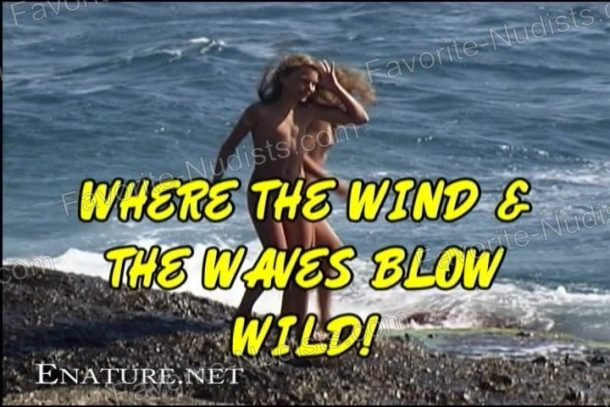 Where the Wind and the Waves Blow Wild! - cover