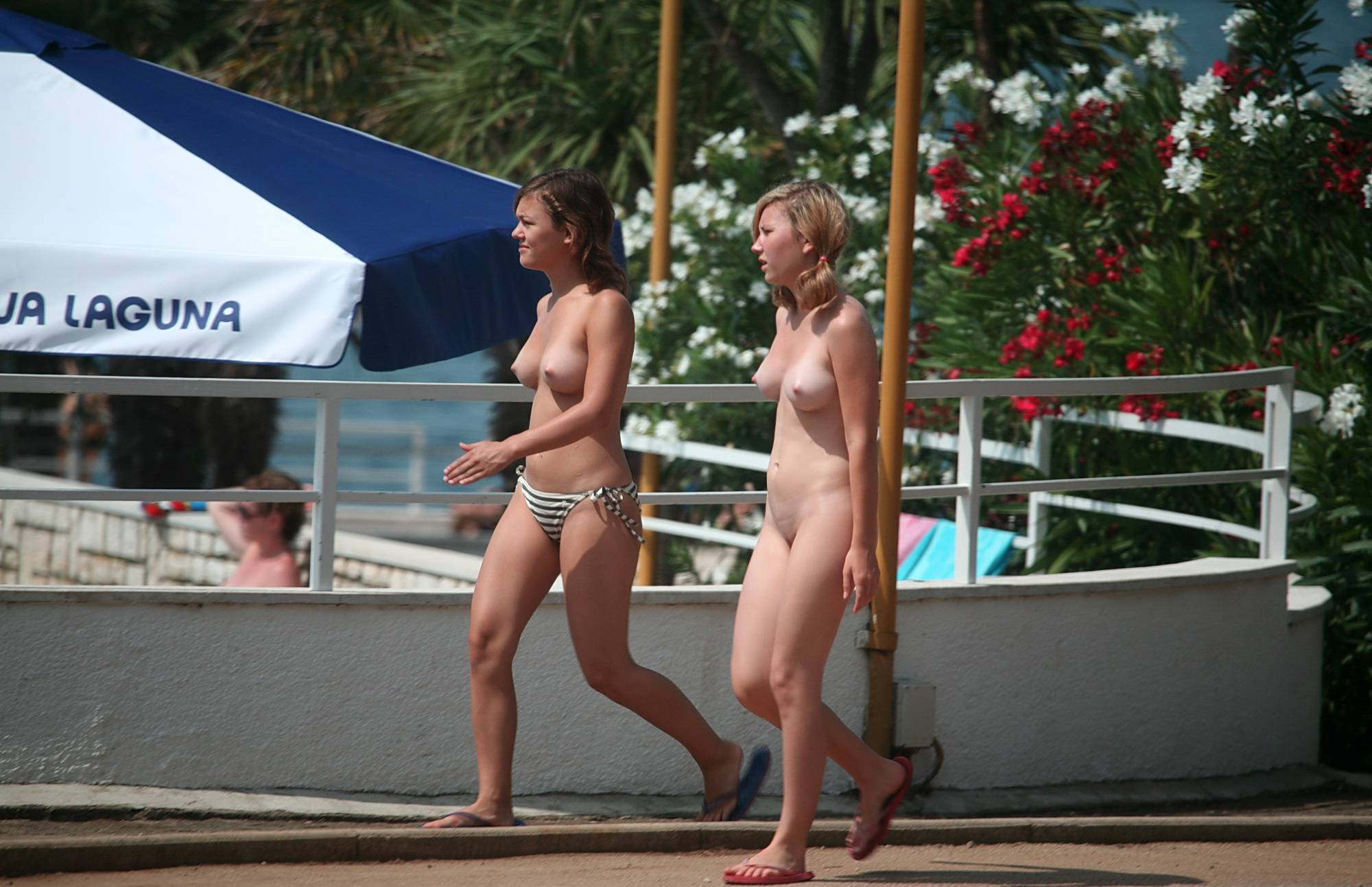Nudist Pictures Good Friends by the Pool - 2