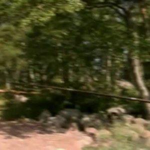 Rituals Of Summer - Naturism in Russia 2000 Series